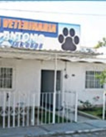 Clinica Veterinaria San Antonio