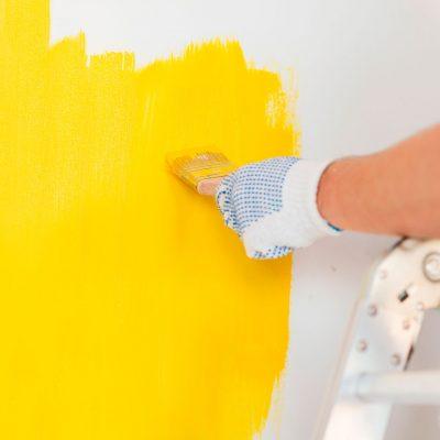 QUIROZ-Paints